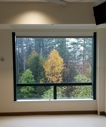 Neuro ICU Window